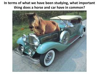 In terms of what we have been studying, what important thing does a horse and car have in common?