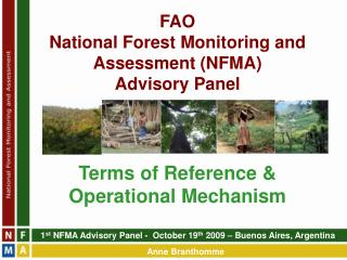 FAO  National Forest Monitoring and Assessment (NFMA)  Advisory Panel