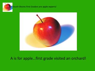 South Shores First Graders are apple experts!