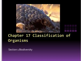 Chapter 17 Classification of Organisms