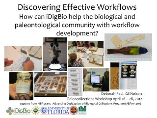 support from NSF grant:  Advancing Digitization of Biological Collections Program (#EF1115210)
