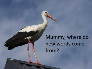 Mummy, where do new words come from?