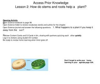 Access Prior Knowledge Lesson 2: How do stems and roots help a 