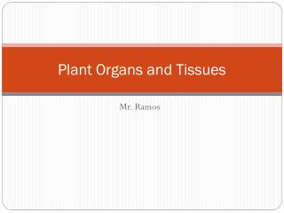 Plant Organs and Tissues