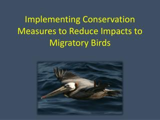 Implementing Conservation Measures to Reduce Impacts to Migratory Birds