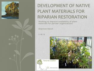 Development of Native Plant Materials for Riparian Restoration