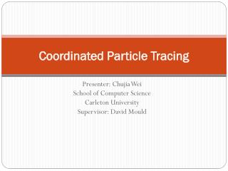 Coordinated Particle Tracing