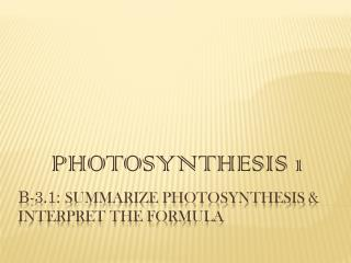B-3.1:  Summarize photosynthesis & interpret the formula