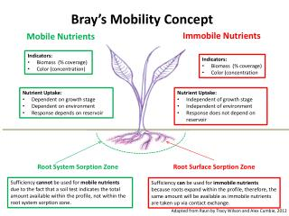 Bray's Mobility Concept