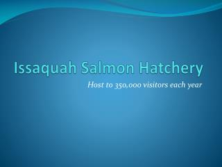 Issaquah Salmon Hatchery