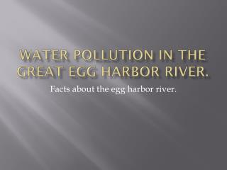 Water Pollution In The Great Egg Harbor River.