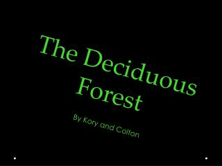 The Deciduous  F orest