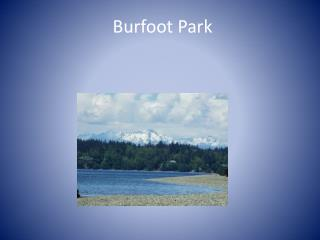 Burfoot  Park