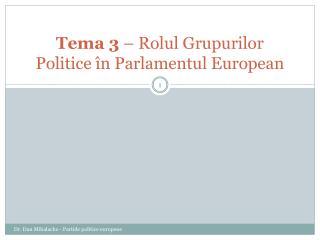 Tema 3  – Rolul Grupurilor Politice în Parlamentul European