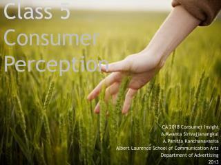 Class 5 Consumer  Perception