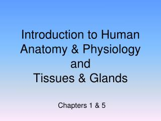 Introduction to Human Anatomy & Physiology and  Tissues & Glands