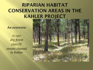 Riparian Habitat Conservation Areas  in the  Kahler  Project