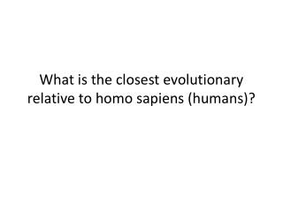 What is the closest evolutionary relative to homo sapiens (humans)?