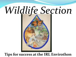 Tips for success at the IRL Envirothon