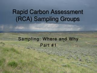 Rapid Carbon Assessment (RCA) Sampling Groups