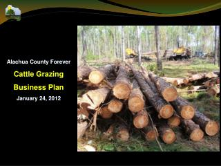 Alachua County Forever Cattle Grazing  Business Plan January 24, 2012