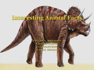Interesting Animal Facts