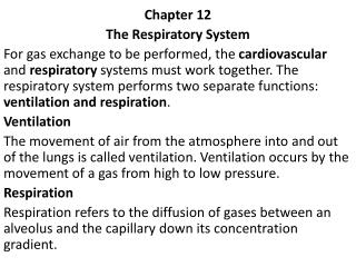 Chapter 12 The Respiratory System