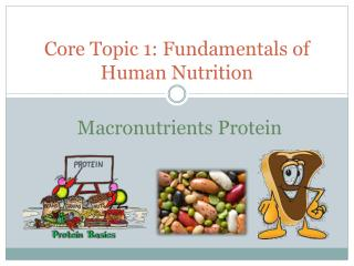 Core Topic 1: Fundamentals of Human Nutrition