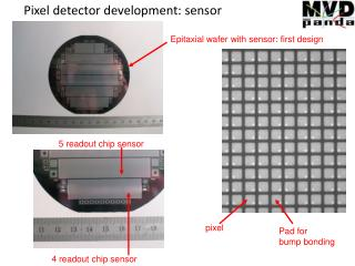 Pixel detector development: sensor