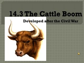 14.3 The Cattle Boom