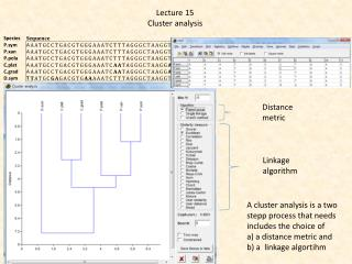 Lecture  15 Cluster analysis