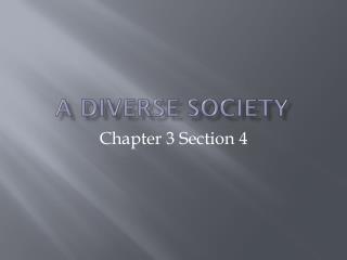 A Diverse Society