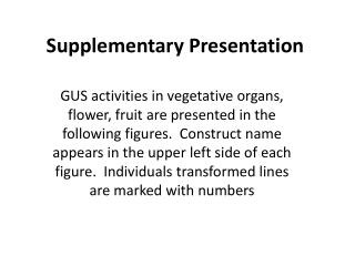 Supplementary Presentation