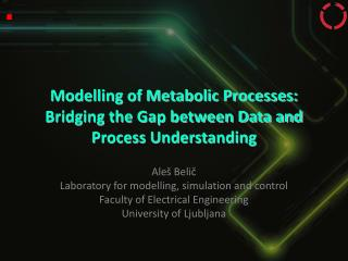 Modelling of Metabolic Processes: Bridging the Gap between Data and Process Understanding
