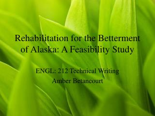 Rehabilitation for the Betterment of Alaska: A Feasibility Study