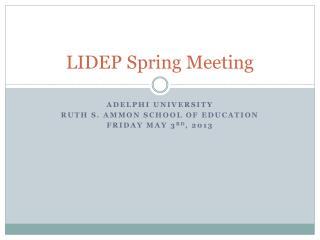 LIDEP Spring Meeting