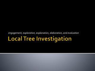 Local Tree Investigation