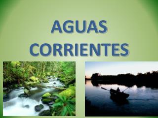 AGUAS CORRIENTES