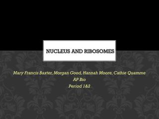 NUCLEUS AND RIBOSOMES