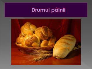 Drumul  pâinii