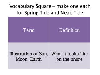 Vocabulary Square – make one each for Spring Tide and Neap Tide