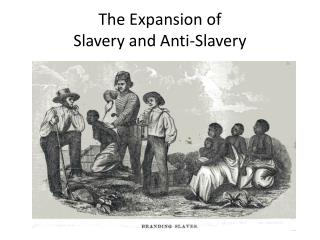 The Expansion of  Slavery and Anti-Slavery