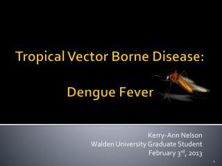 Tropical Vector Borne Disease: Dengue Fever