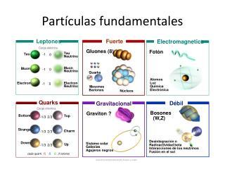 Part�culas fundamentales
