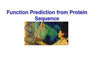 Function Prediction from Protein Sequence