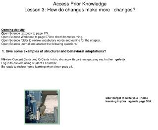 Access Prior Knowledge Lesson 3: How do changes make more 
