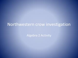 Northwestern crow investigation