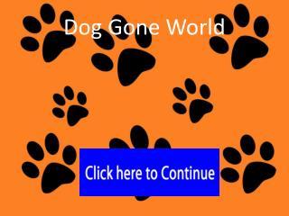 Dog Gone World