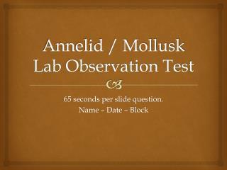 Annelid / Mollusk Lab Observation Test