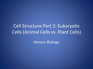 Cell Structure Part 2: Eukaryotic Cells (Animal Cells vs. Plant Cells)